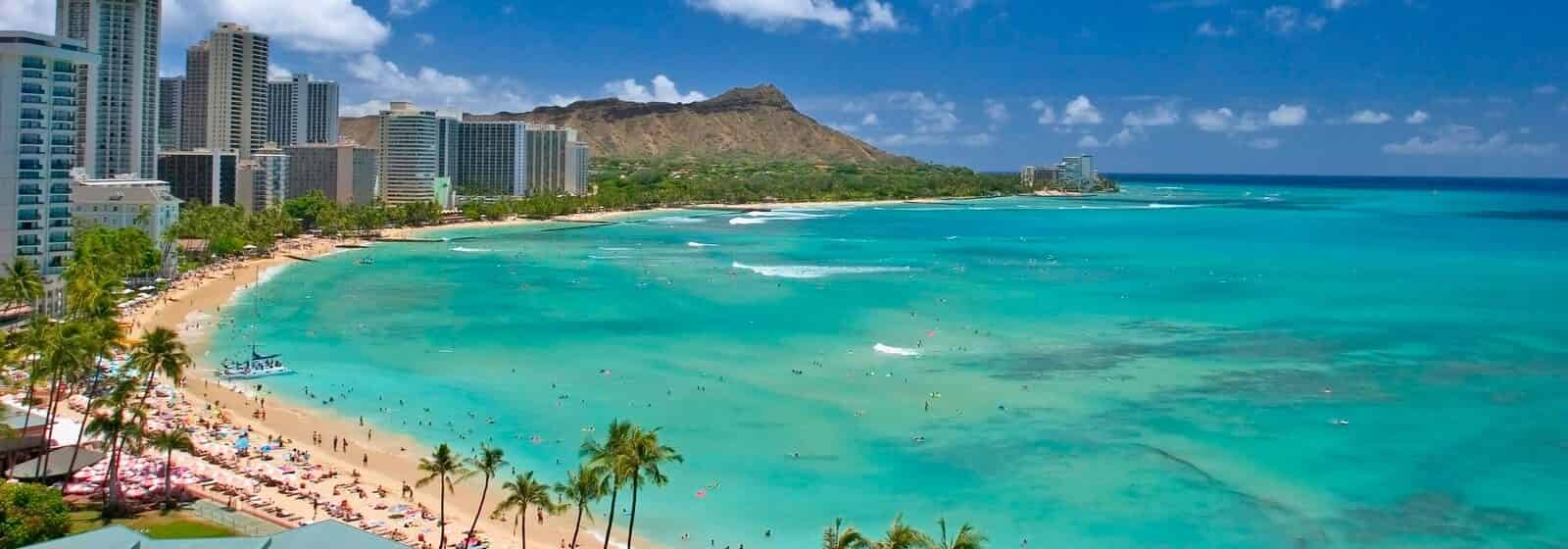 banner image bird eye view of a Waikiki Beach